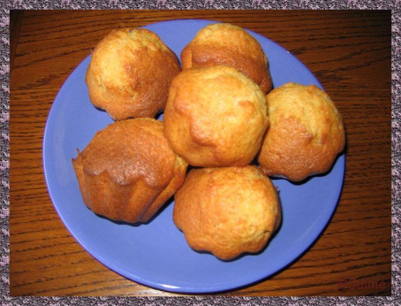 Petits gâteaux au yaourt et à la cassonade dans 04 - Desserts et douceurs img2666soline