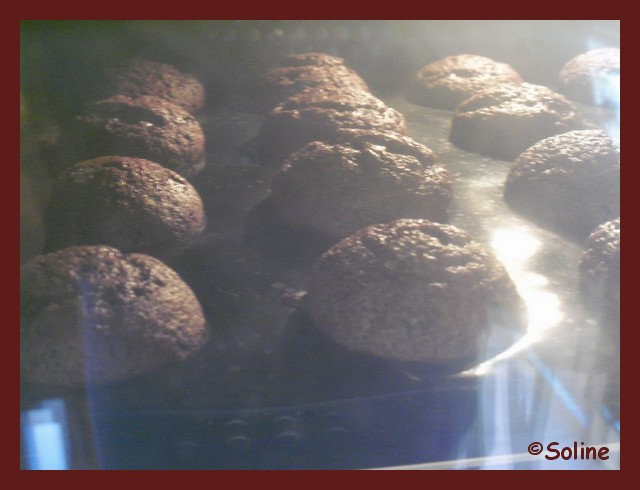 Muffins choco-noisette dans 04 - Desserts et douceurs 1005698soline