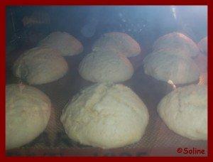 100_6739-soline-300x228 dans 04.1 Biscuits