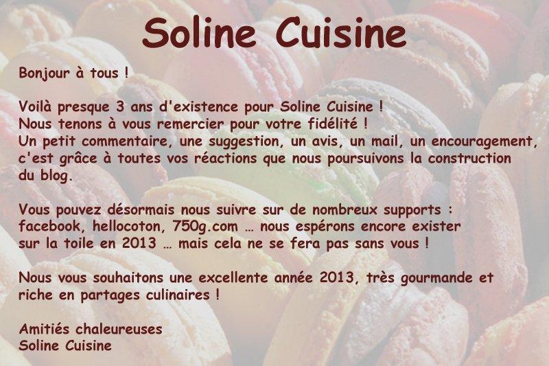 Newsletter 2013 dans 00 - Newsletter soline-2013